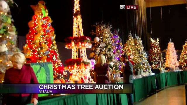 - 35th Christmas Tree Auction At Visalia Convention Center
