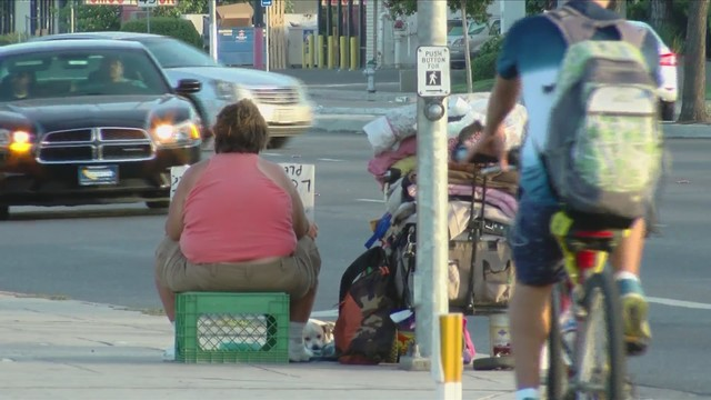 Drivers who hand money or food to panhandlers could soon be fined